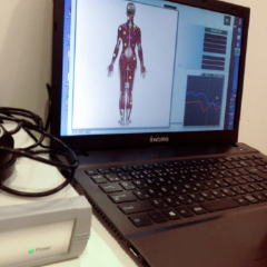ヘッドセラピー+メタトロン測定